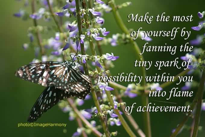 Beautiful Achievement Quote About Fanning The Tiny Spark Of Possibility Flame Achievement