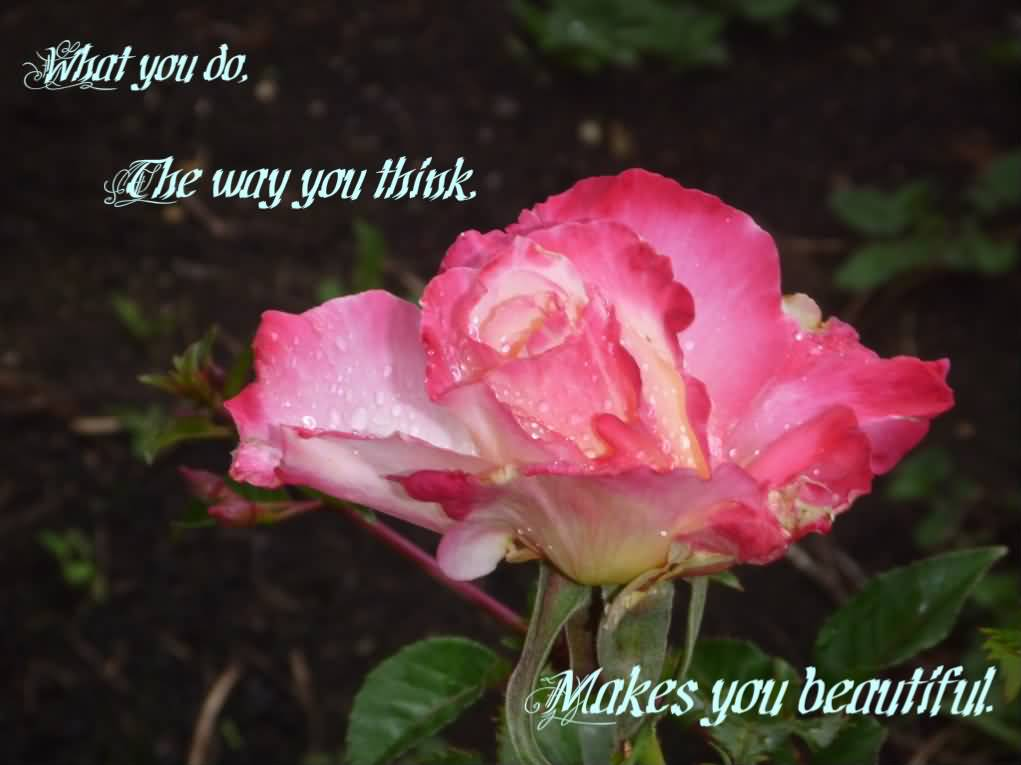 Beauty Quotes And Saying The Way You Think Makes You Beautiful