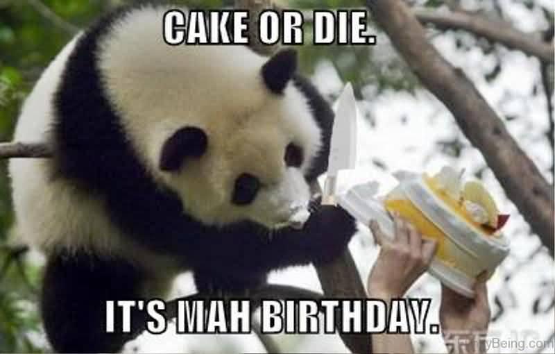 Cake Or Die It's Mah Birthday