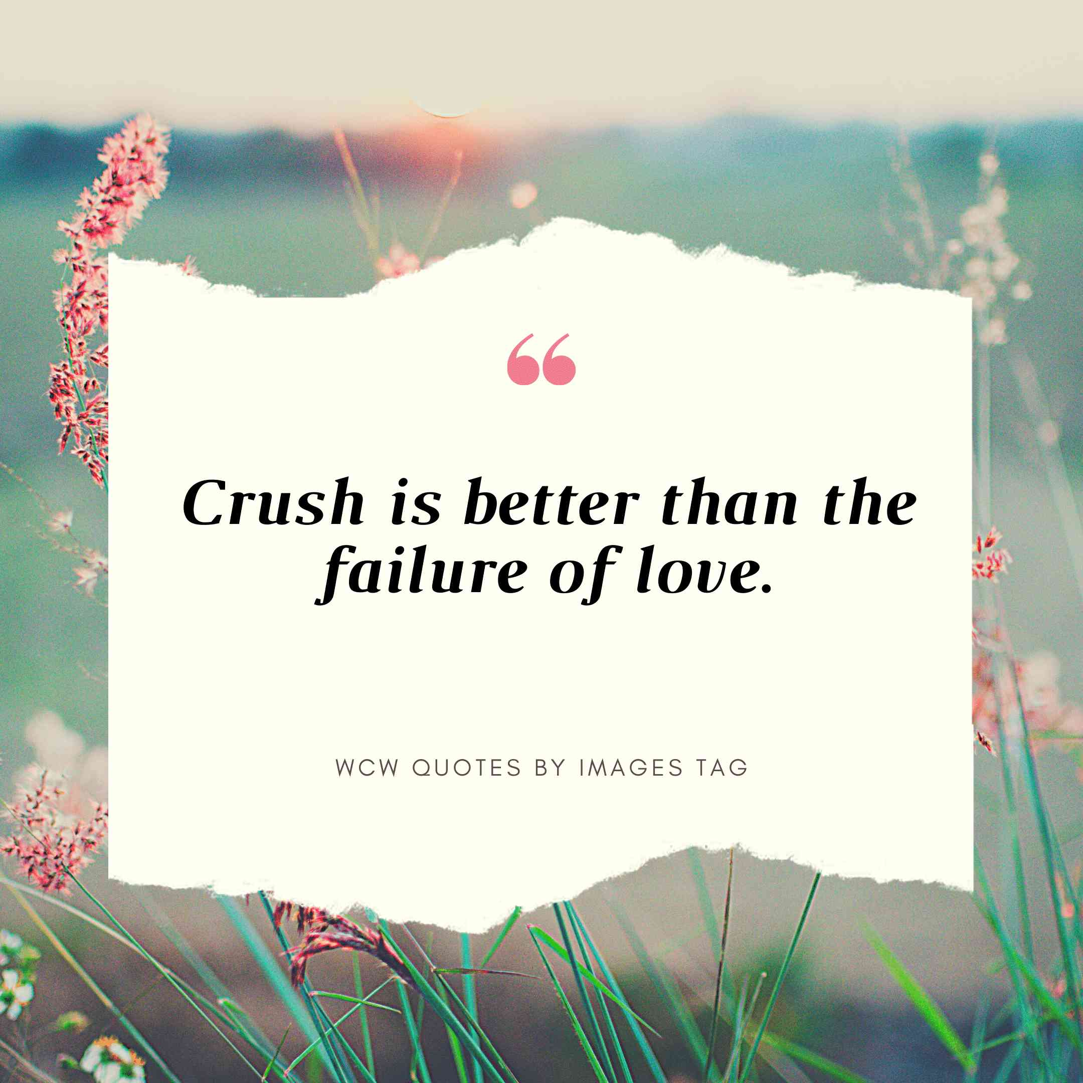 Crush Is Better Than The Failure Of Love Wcw Quotes For Yourself,