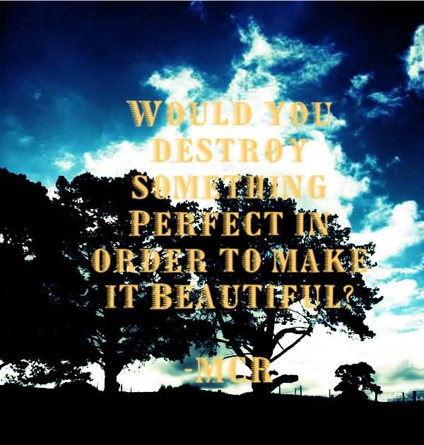 Cute Beauty Quotes For Would You Destroy Something Perfect In Order To Make It Beautiful