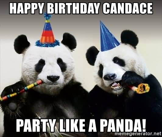 Happy Birthday Candace Party Like A Panda