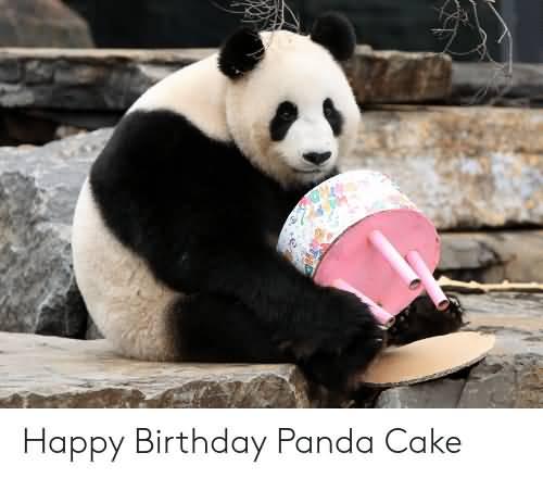 Happy Birthday Panda Cake