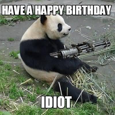 Have A Happy Birthdayt Idiot Panda