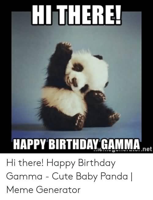 Hi There Happy Birthday Panda Gamma