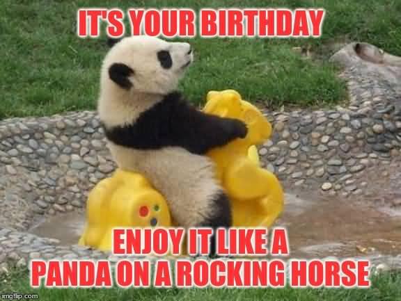 Its Your Birthday Enjoy It Like A Panda On A Rocking Horse