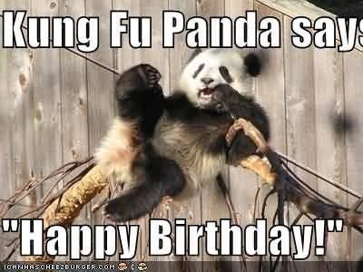 Kung Fu Panda Says Happy Birthday Panda