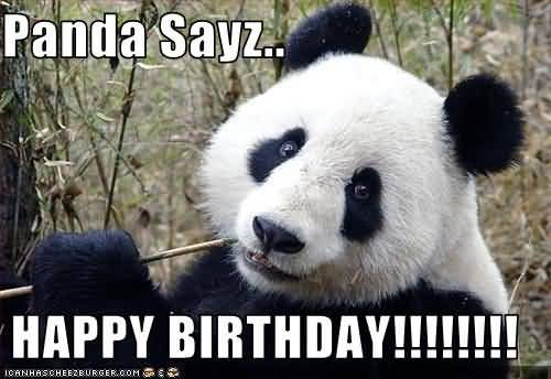 Panda Sayz Happy Birthday
