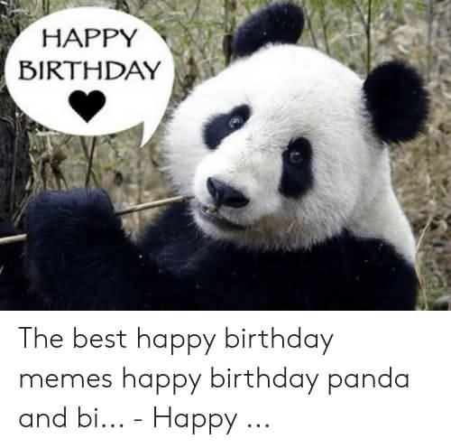 The Best Happy Birthday Memes
