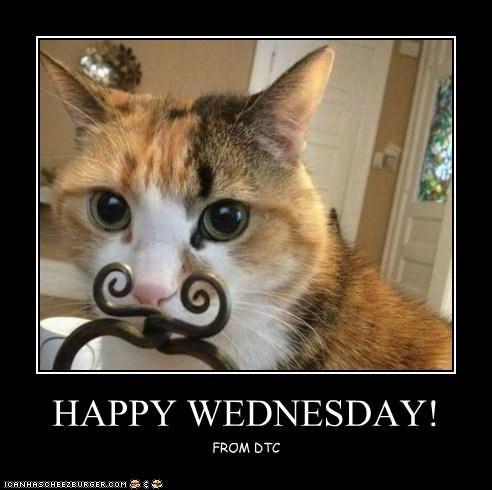 Best Happy Wednesday Meme