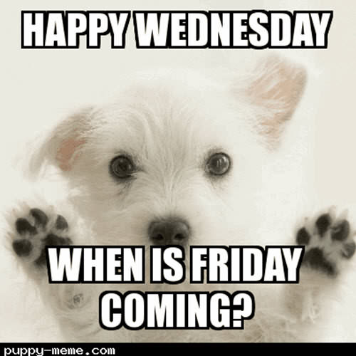 Happy Wednesday Meme When Is Friday Coming