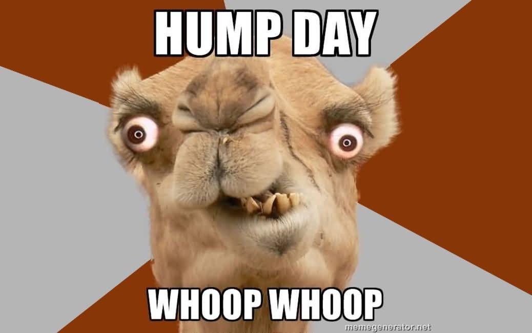 Hump Day Whoop Whoop