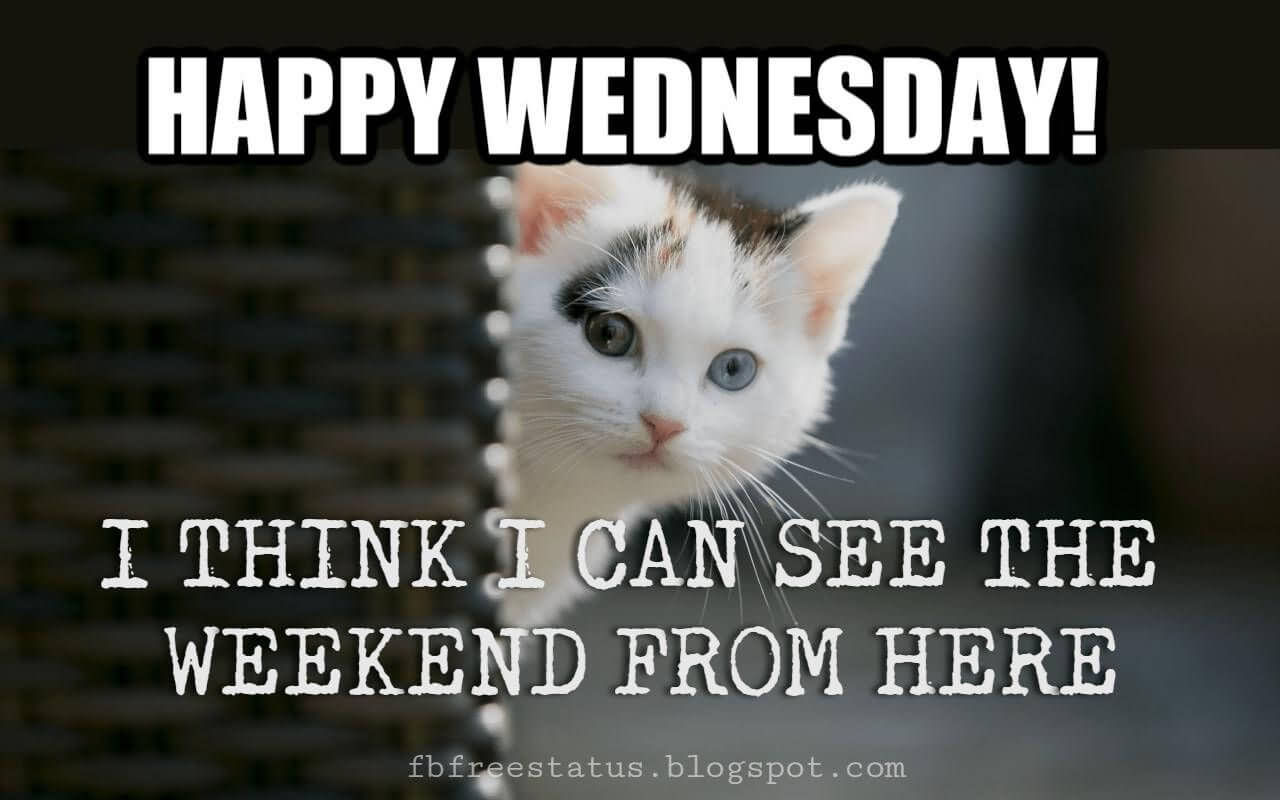 I Think I Can See The Weekend From Here It's Only Wednesday Meme Funny