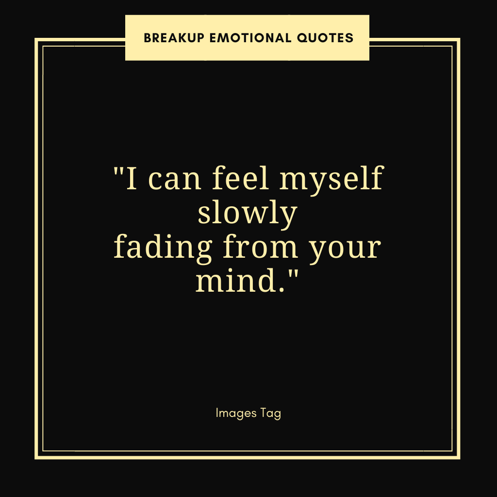 I Can Feel Myself Slowly Fading From Your Mind. Breakup Emotional Quote