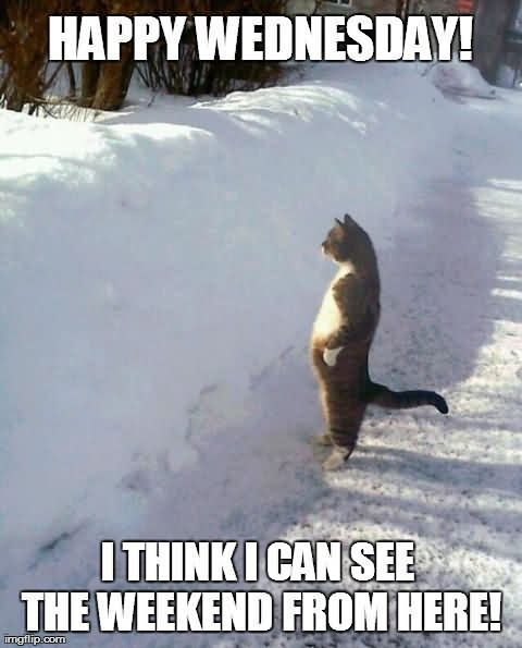 I Think I Can See The Weekend From Here It's Only Wednesday Meme