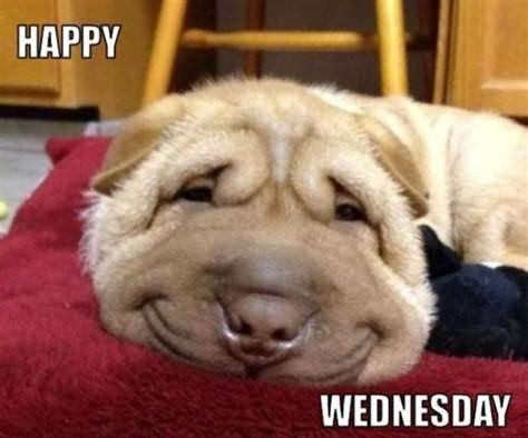It's Only Happy Wednesday Meme