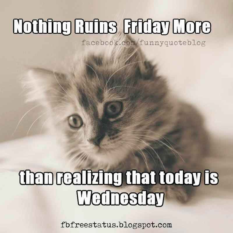 Nothing Ruins Friday More Than Realizing That Today Is Wednessday It's Only Wednesday Meme