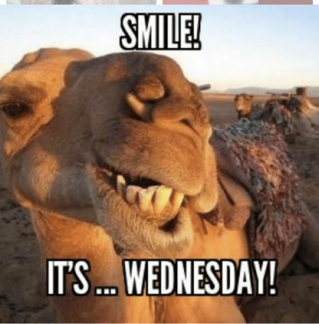Smile It's Only Wednesday Meme