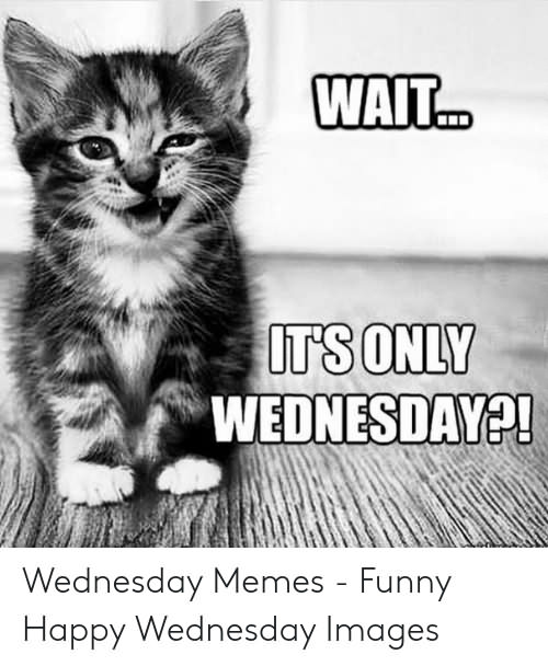 Wait It's Only Wednesday Meme Funny