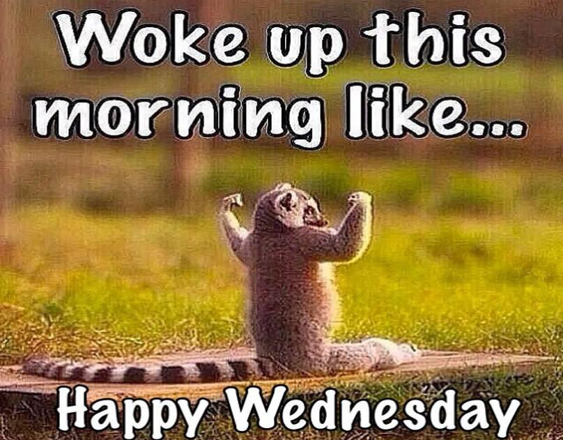 Woke Uo This Morning Like Wednesday Meme