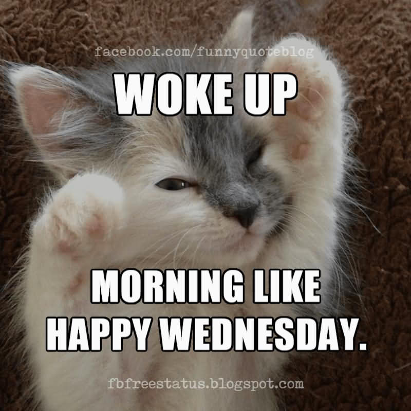 Woke Up Wednesday Meme Funny