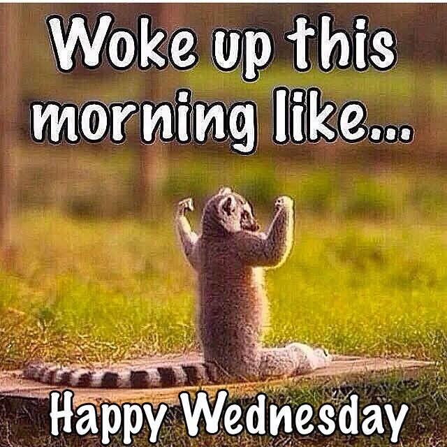 Woke Up This Morning Like Wednesday Meme