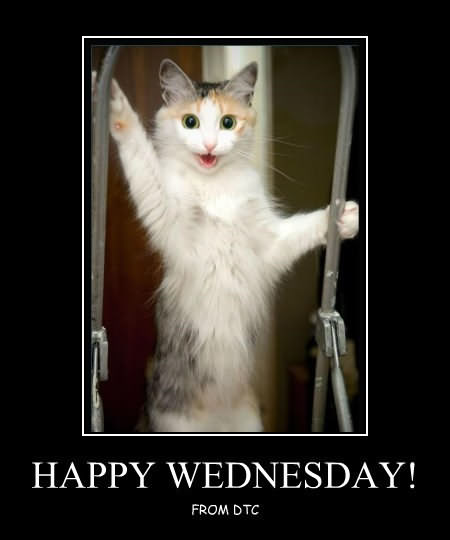 It's Only Wednesday Meme Funny