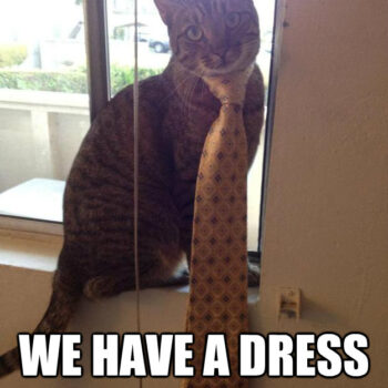 30 Best Collection of Funny Dress Code Memes
