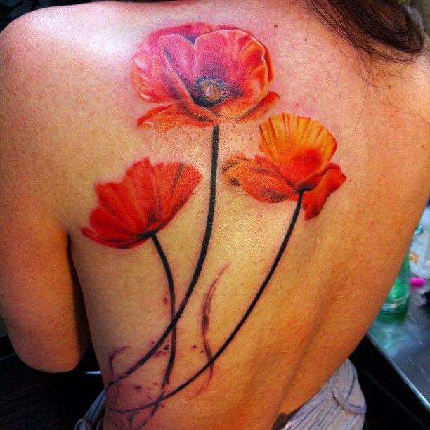 Poppy Flowers Tattoo On Left Back Shoulder