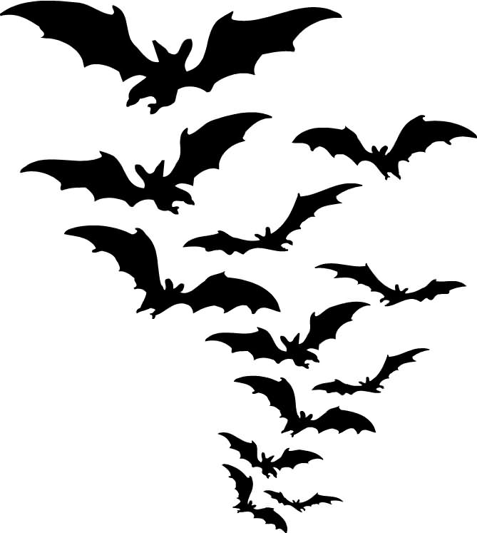 A Bats Comeout On Halloween 2020
