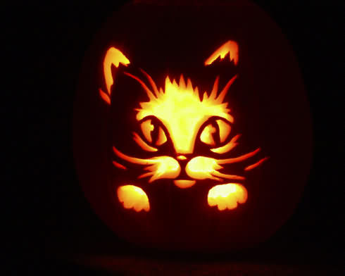 A Kitty Art For Halloween 2020 Images