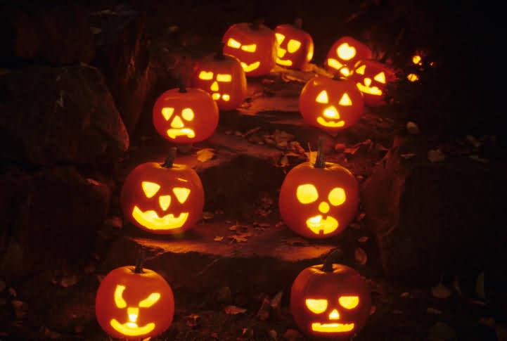 A Pumkin For Halloween 2020 Pic For Whatsapp
