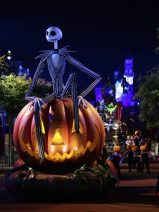 Looking For Party Special Halloween Day 2020