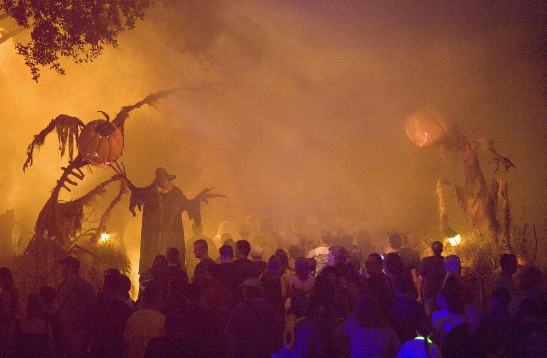 People Celebration On Halloween