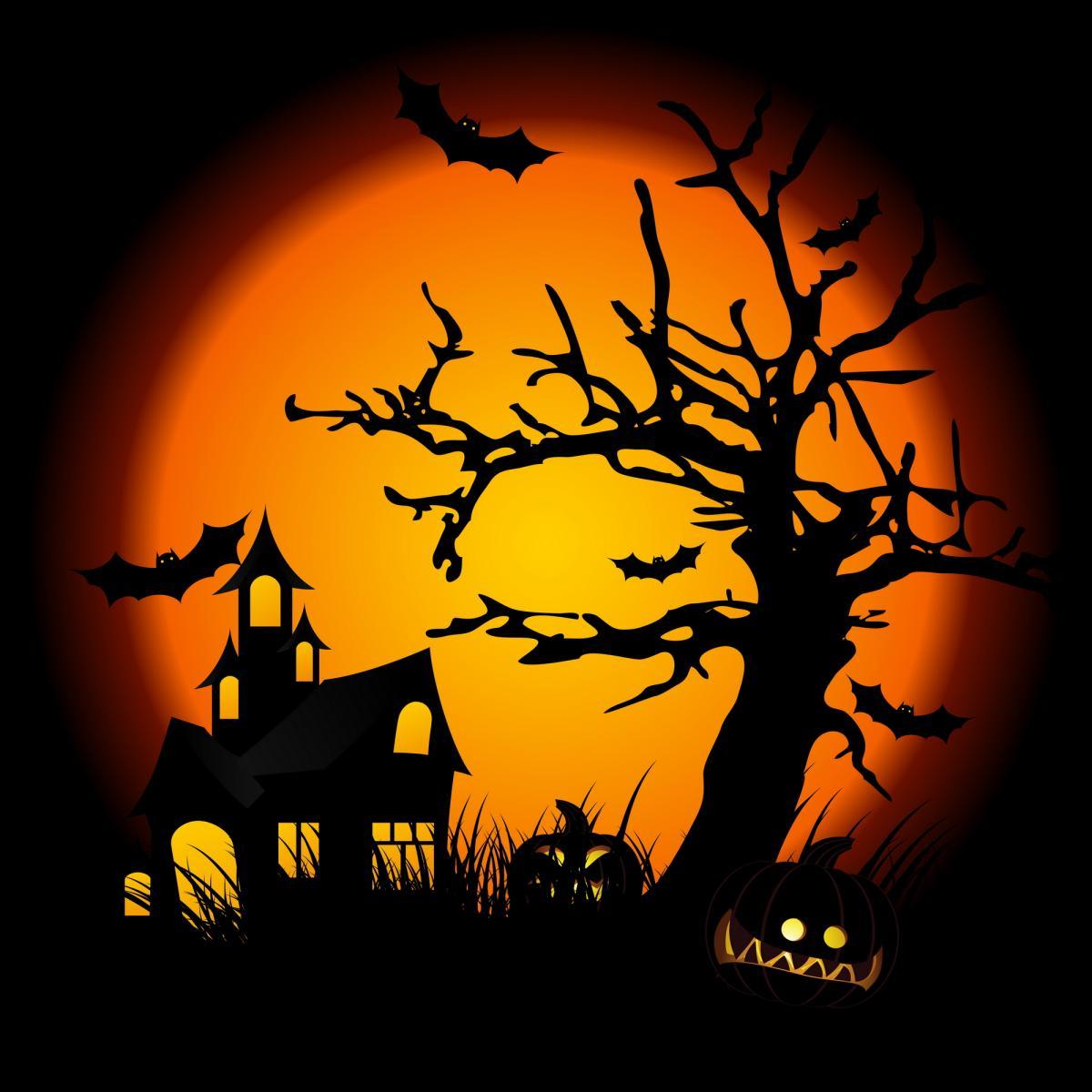 Scray Halloween House