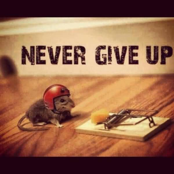 Motivational Quites For Safty Never Give Up