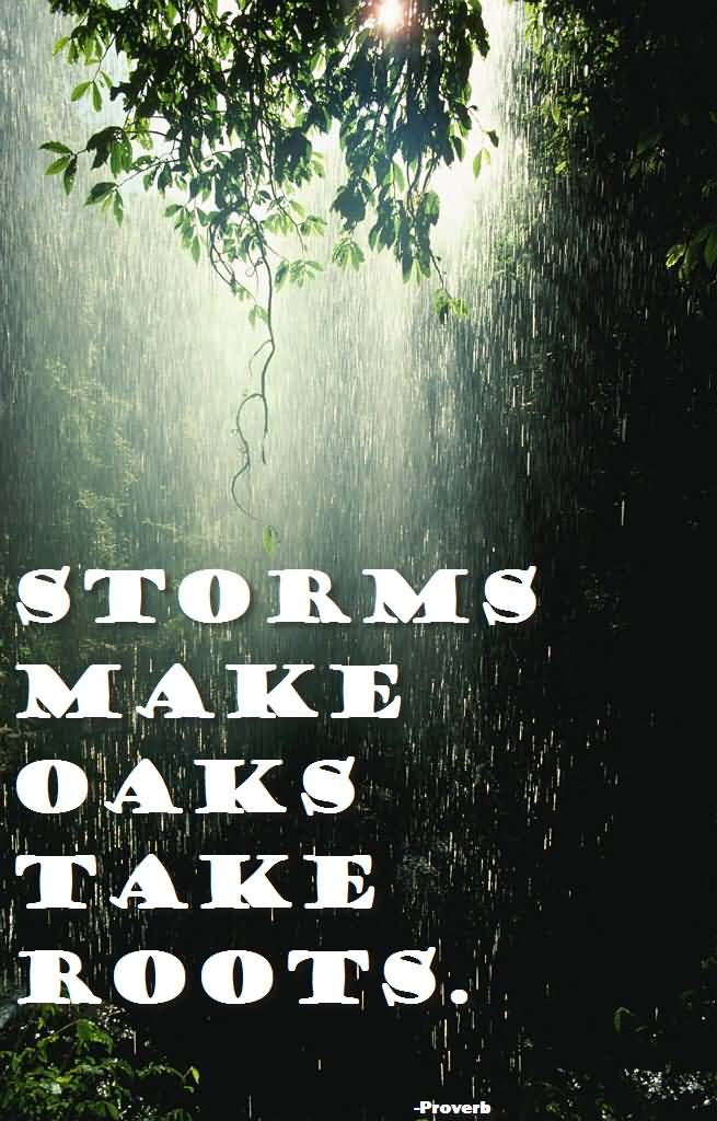 Motivational Quotes For Nature Stroms Make Oaks Take Roots