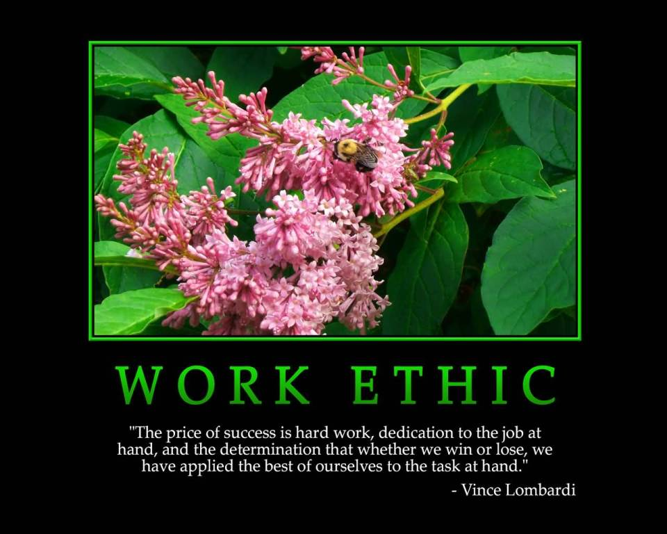 Motivational Work Quote For Work Ethic
