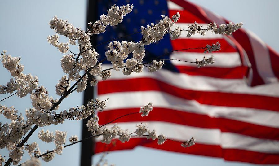 Happy Memorial Day 2021 Flag
