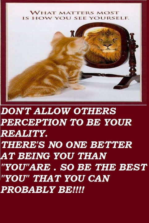 Don't Allow Others Perception To Be Your Reality. There's No One Better At Being You Than ''you'' Are. So Be The Best ''you'' That You Can Probably Be!!!